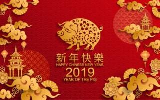2019 год по китайскому календарю
