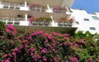 Гест Хаус Хайнань — стоит ли ехать в отель?