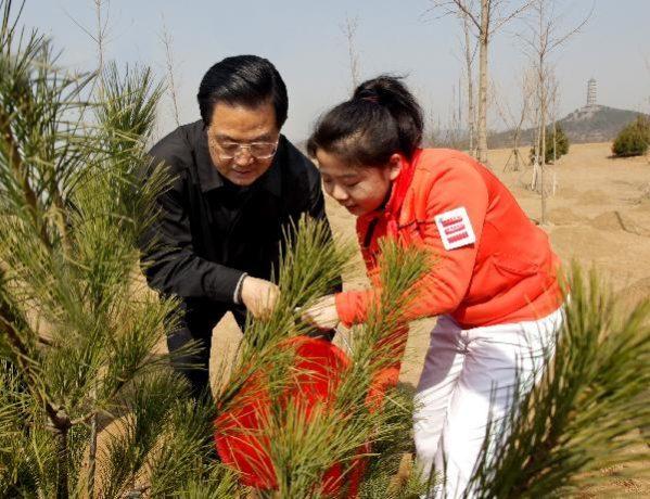 День посадки деревьев отмечается и в Тайване