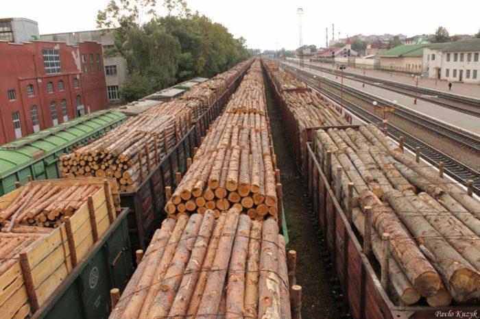 Продажа леса в Китай