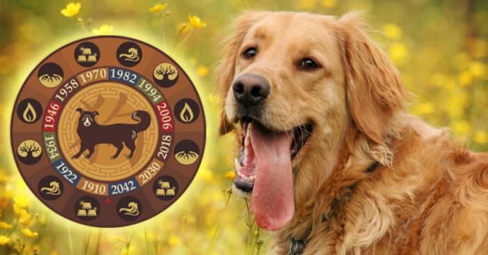 Знак 2018 года: жёлтая земляная собака.