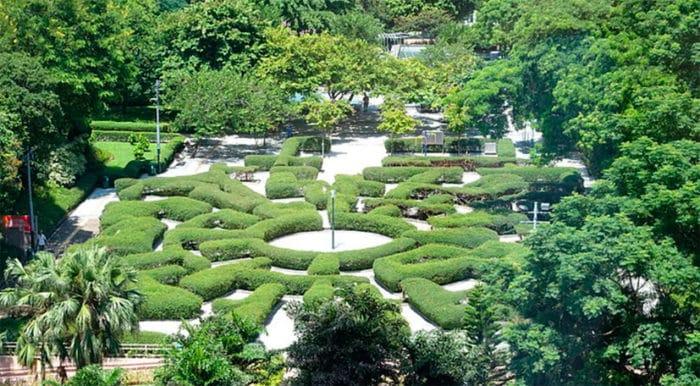 Тропический лабиринт в центре паркового массива Коулун.