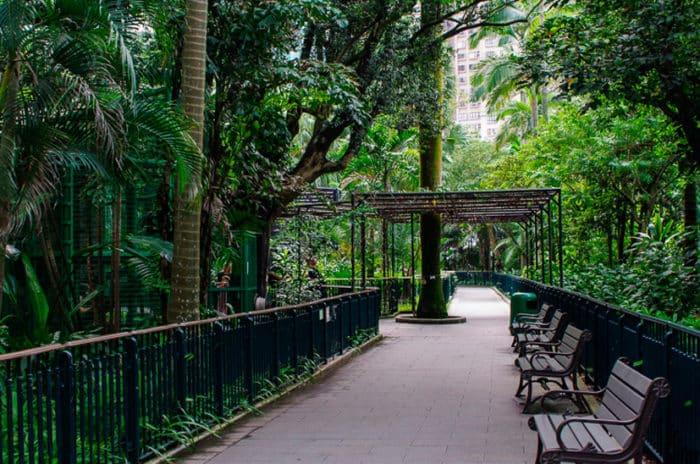 Потрясающий ботанический парк Гонконга.