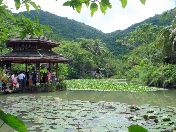 Тропический парк « Ялонгбэй