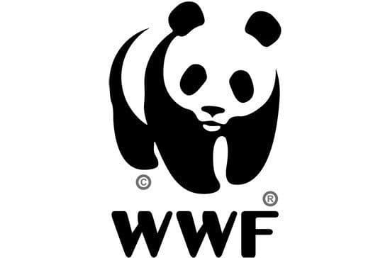 Панда на эмблеме международного фонда дикой природы WWF