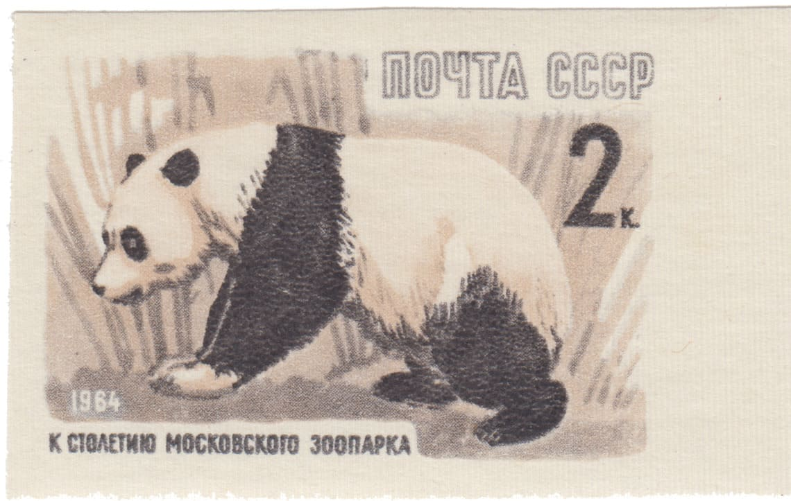 Первая панда в СССР